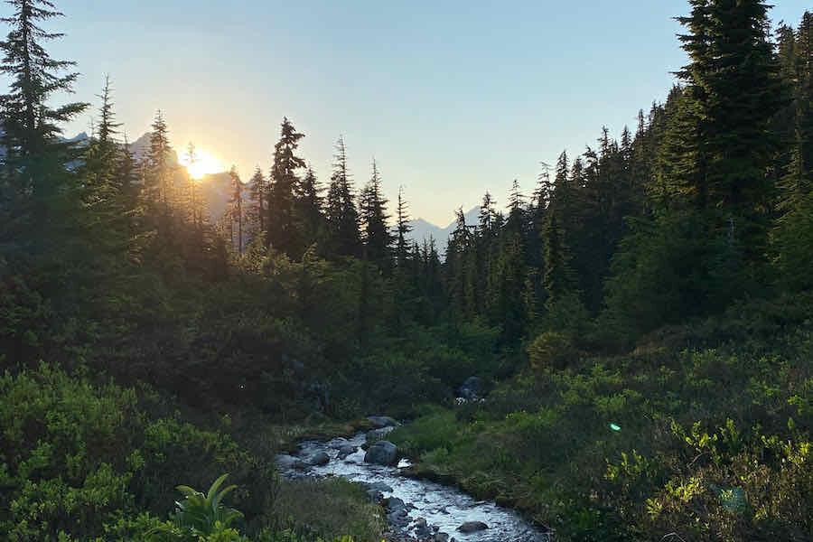 Stream in forest near Mount Baker near Bellingham, Washington.