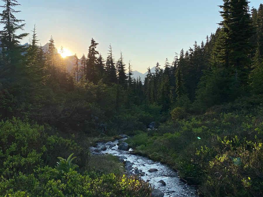 Stream in forest near Mount Baker near Bellingham, Washington